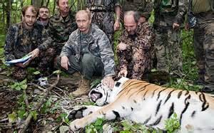 aa-Vladimir-Putin-hunting-tiger